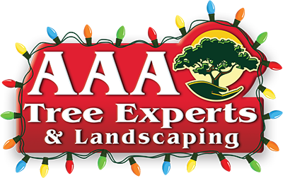AAA Tree Experts logo